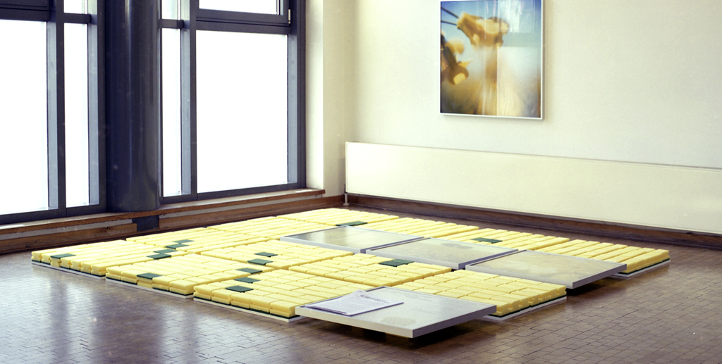 FarbeMVGelb-KunstvereinRostock-2006_klein